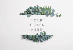 Eucalyptus Custom Scene Creator Template 6 Thumbnail