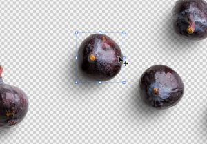 Fruit Fig Isolated Objects