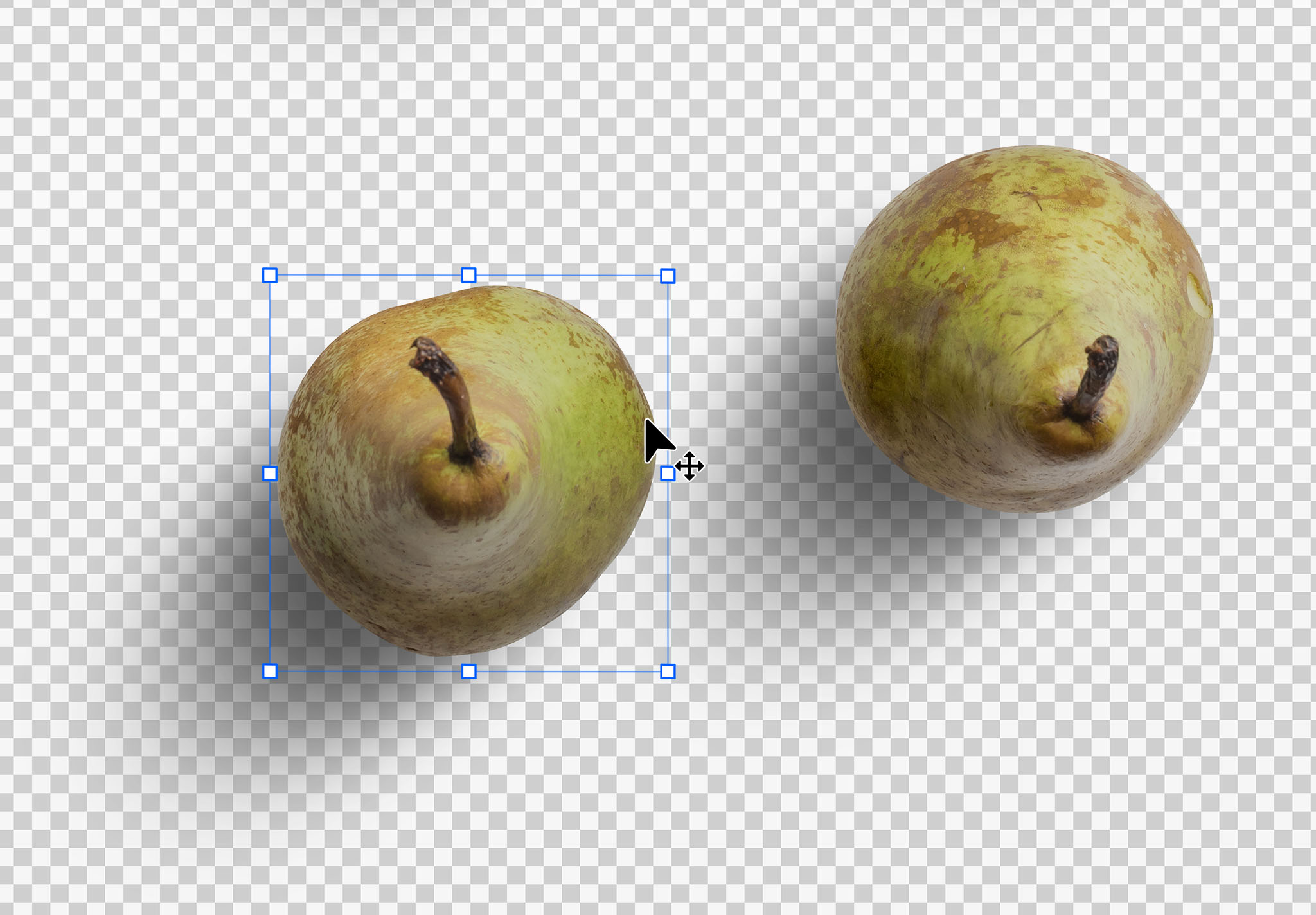 Fruit Pears Isolated Objects