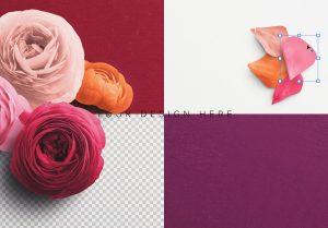 Ranunculus Custom Scene Creator Template 4 Image02