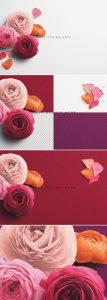 Ranunculus Custom Scene Creator Template 4Preview1