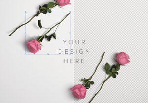 Roses Custom Scene Creator Template 1 Image01