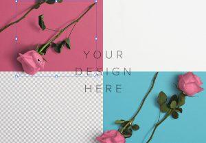 Roses Custom Scene Creator Template 1 Image02