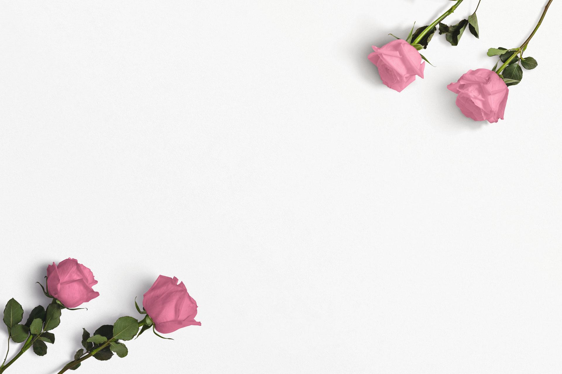 Roses Custom Scene Creator Template 1 Thumbnail 1