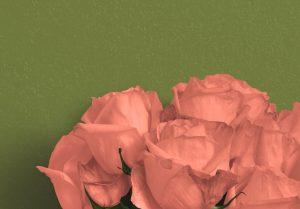 Roses Custom Scene Creator Template 3 Image04